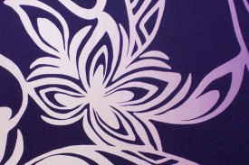 HR1478 Purple