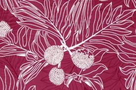 PAA1231 Fuchsia