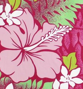 PBB2614 Fuchsia