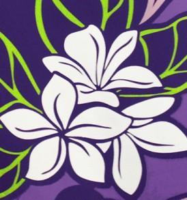 PBC0620 Purple