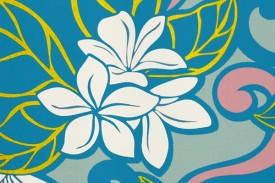 PBC0620 Turquoise