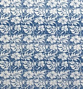 PAA1235_Blue