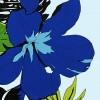 PBB2619_Blue_ZZ