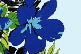 PBB2619 Blue