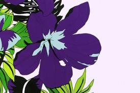 PBB2619 Lavender