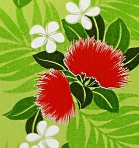 PBC0621 Green