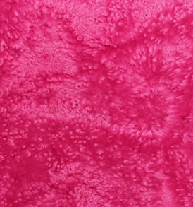 BT0161_Pink