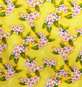 CAA0854_Yellow