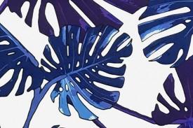 PAA1250 White Blue