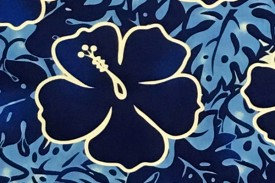 PAC1336 Blue