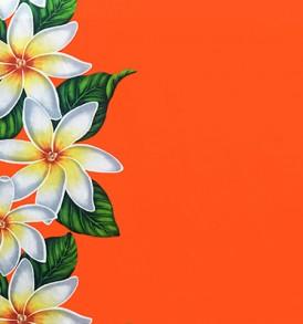 PBB2620_Orange