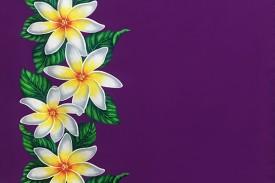 PBB2620_Purple