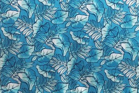 PAA1255_Turquoise