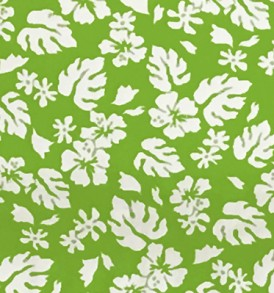 CAA0844 Lime White