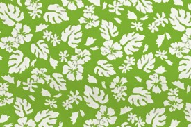 CAA0844 Lime White