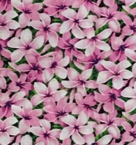 CAA0872 Pink