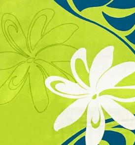 HR1475 Lime