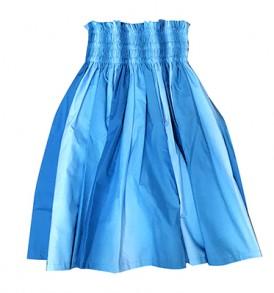 PAU1861 Blue