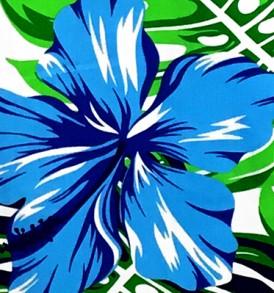 PBB2623 Blue White