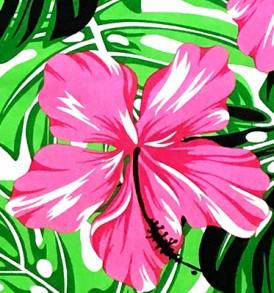 PBB2623 Pink White