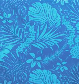 PAA1262_Blue