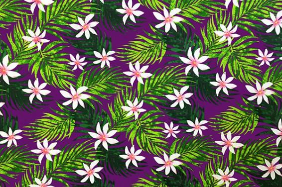 PAB0838_Purple