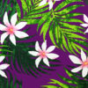 PAB0838_Purple_Z