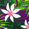 PAB0838_Purple_ZZ