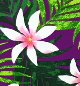 PAB0838 Purple