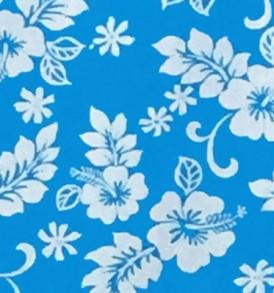 CAA0898 Turquoise
