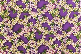 PAB0842_Purple