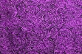 PAB0844_Purple