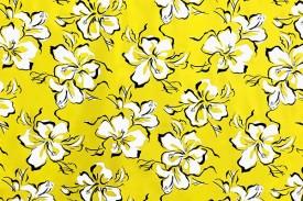 PAC1356_Yellow