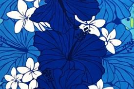 PBC0631 Blue