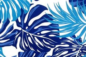 PAB0849 Blue