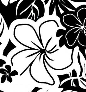PAC1361 Black White