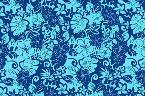 PAC1361_Blue