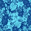 PAC1361_Blue_Z