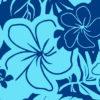 PAC1361_Blue_ZZ