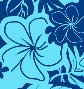 PAC1361 Blue