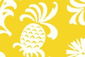 PAC1364 Yellow