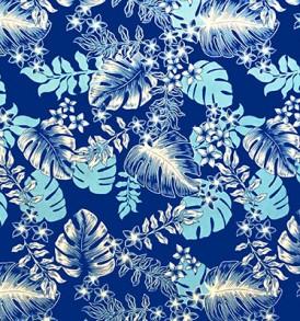 PAC1366_Blue