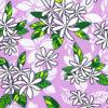 PAB0852_Lavender_Z