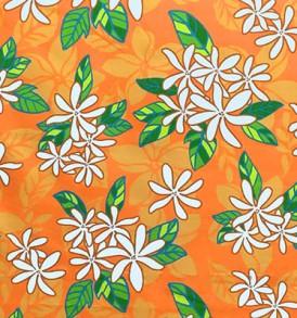PAB0852_Orange