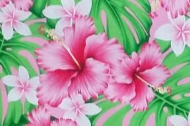 PAB0860 Pink