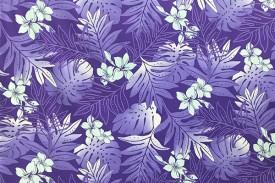 PAB0863_Purple