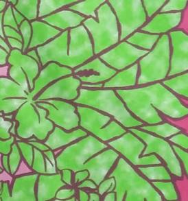 PBB2636 Pink