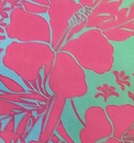 PBB2637 Aqua Pink