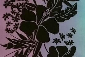 PBB2637 Blue Lavender