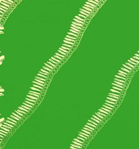 PBC0637_Green